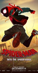 2018 SpiderMan Into the SpiderVerse