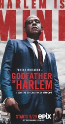 Godfather of Harlem الموسم 01