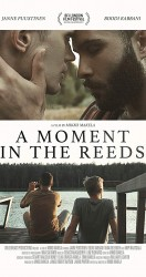 A Moment in the Reeds 2017