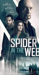 2019 Spider in the Web