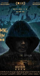 The Looming Storm 2017