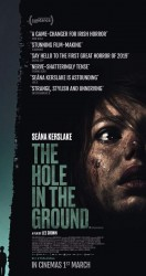 2019 The Hole in the Ground